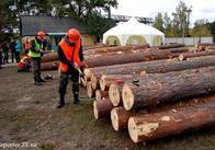 На Житомирщині в ігровій формі долають труднощі впровадження електронного обліку деревини