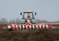 У Житомирській області ярові та зернобобові засіяні на 100%
