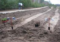 У Житомирській області на лісове та мисливське господарства витратили 204 млн. грн.