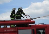 У Житомирській області рятувальники оперативно гасили лісові пожежі. Фото. Відео