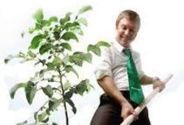 """В Житомирі Приватбанк проведе щорічний травневий """"зелений"""" суботник"""