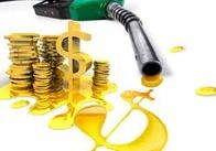 Бензин дорожчає: як житомирянам заощадити