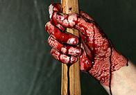 Вбивство у Житомирському районі. Обставини злочину