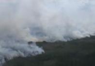 В Білорусі лісову пожежу, що прийшла з Житомирської області, гасили 200 чоловік та авіація. Відео
