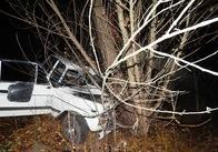 """Вночі на трасі Житомир-Чернівці """"ВАЗ"""" """"влетів"""" у дерево. Тіла загиблих витягували рятувальники. Фото"""