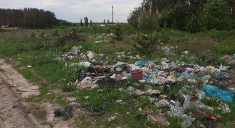 Жителі села Кам'янка під Житомиром починають спаскуджувати сміттям свій ліс