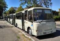 Житомирян возитимуть з Мальованки до Діагностичного центру 10 нових маршруток. Фото