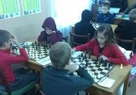У Житомирі провели чемпіонат області з шахів