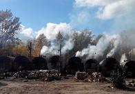 На Житомирщині СБУ ловить нелегальних випалювачів деревного вугілля