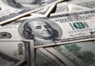 Профіцит зовнішньої торгівлі у Житомирській області за 8 місяців 2016 року становив 105 мільйонів доларів