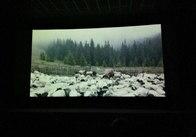 Протягом п'яти днів житомирянам безкоштовно показували документальні фільми