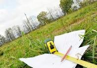 Ліцей на Житомирщині незаконно віддав приватній фірмі 130 га землі