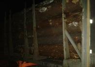 """На Житомирщині СБУ прикрила чергову """"базу"""" із краденим лісом. Фото"""