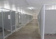 """У Житомирі хочуть створити КП """"Центр захисту тварин"""""""