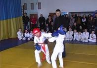 На Житомирщині юні динамівці змагались у вправності рукопашного бою