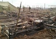На полігоні під Житомиром згоріли палатки десантників. Фото