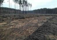 На Житомирщині СБУ викрила незаконний видобуток піску