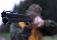 Під Житомиром лісники ганялись за озброєними мисливцями
