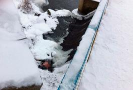 У Коростені під мостом знайшли труп чоловіка. Фото