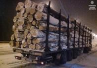На Житомирщині патрульні затримали вантажівку з деревиною без документів