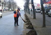 В Житомире продолжается активная работа по уборке города от мусора (фото)