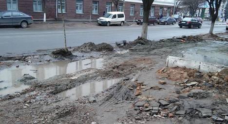 У Житомирі тротуари й зупинки громадського транспорту потонули у багнюці