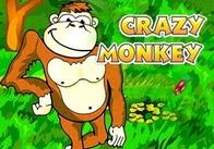 """Проведи гарно час з """"божевільною мавпочкою"""""""