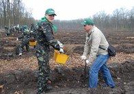 Журналістського лісу на Житомирщині побільшає