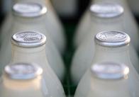 У 2017 році в Україні імпорт молока зросте на 20% - прогноз