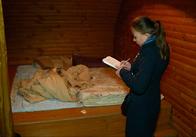 У Житомирі в бані накрили бордель