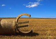 ЄБРР інвестує в сільське господарство України 150-200 млн євро