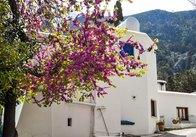 Весна на Кіпрі - чудова пора року