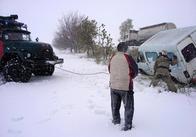 На Півдні України сніг та негода валить дерева, знеструмлює населені пункти. Фото