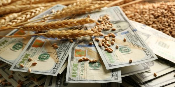 У першому кварталі 2017 року загальна капіталізація українських агрохолдингів досягла найвищого показника
