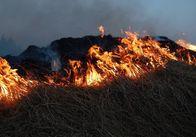 По Україні оголошено високий і надзвичайний клас пожежної небезпеки. Житомирщину оминуло