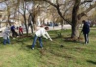 Житомирська міська рада просить житомирян допомоги у прибиранні міста від сміття