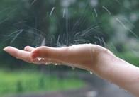 Сьогодні на Житомирщині дощ та грози, але завтра вже буде сонячно - синоптики