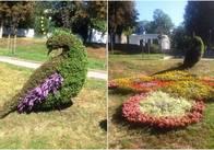 """""""Зеленбуд"""" насадить квіток для """"Парку"""" на 32 тисячі"""
