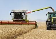 Чотири райони Житомирської області майже не підготовлені до збору урожаю