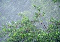 Рятувальники попереджають про про сильні дощі, грози та шквали в окремих областях України. Житомирщина теж у списку