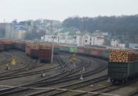 Найбільше українські дрова у ЄС експортують із Житомирської області