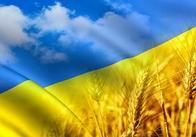 """Проект """"Слово, що єднає Україну"""" привітав житомирян з Днем Незалежності.ВІДЕО"""