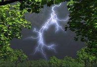 Парасольки не завадять: Житомирщину може накрити сильний дощ