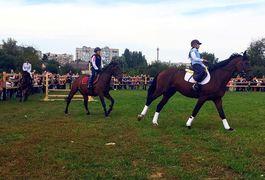 У Житомирі відбулося «Свято українського коня»