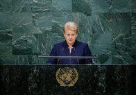 """Глава Литви: """"Керівництво Росії ніяк не може побороти свою ненависть до Заходу"""""""