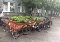Акцію «День без авто» на Михайлівській підтримали велосипедисти, які і так на них щодня їздять. Фото