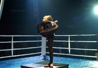 Житомирянам показали святкове шоу у цирку Кобзов (фото)