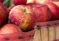 Обласний протитуберкульозний диспансер накупив недешевих яблук
