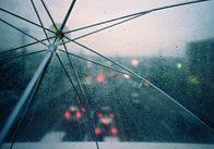 Завтра у Житомирській області похолоднішає та буде дощ