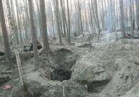 На півночі Житомирської області знову масово незаконно видобувають бурштин
